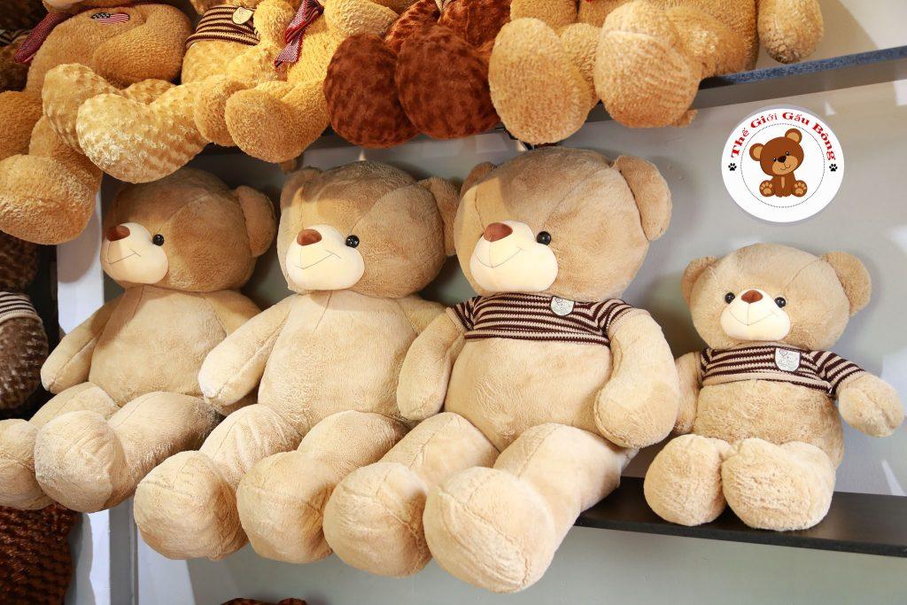 gau-bong-teddy-long-min (48)