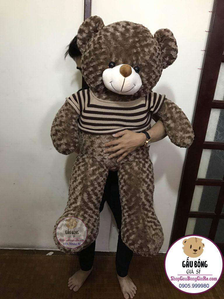 shop-gau-bong-teddy-tphcm (1m2)