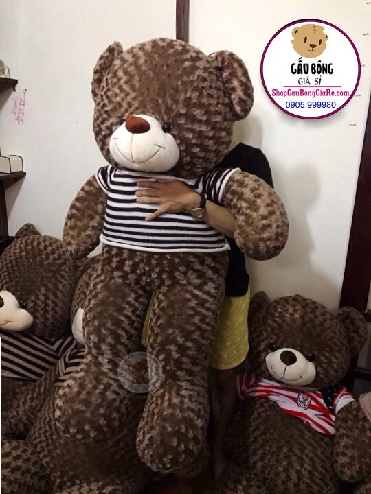 shop-gau-bong-teddy-tphcm (1m4)