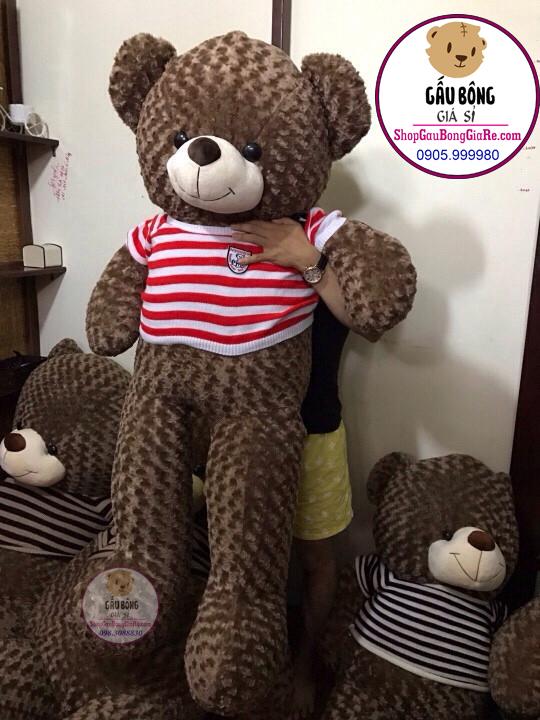 shop-gau-bong-teddy-tphcm (1m6)