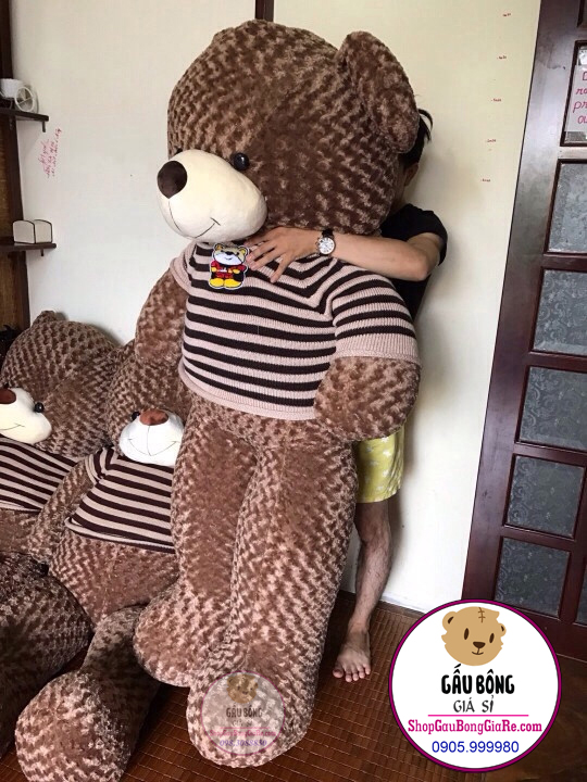 shop-gau-bong-teddy-tphcm (1m8)