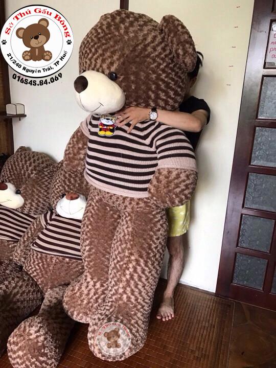 shop-gau-bong-teddy-hue-1