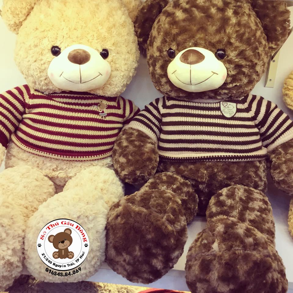 shop-gau-bong-teddy-hue-3